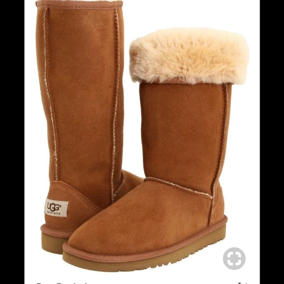 Are ugg boots a type of boot or a brand of boot?